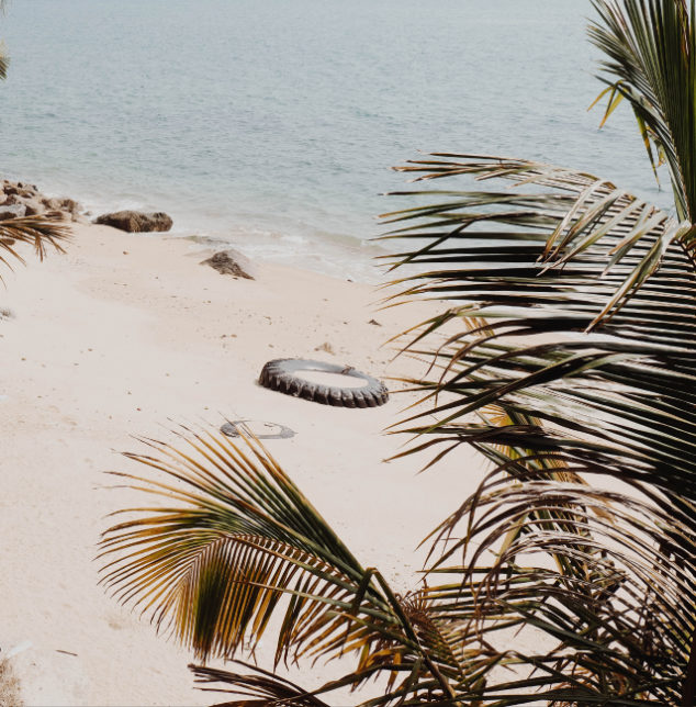 palm tree on beach image for guidance with PTSD therapy in bolingbrook counseling